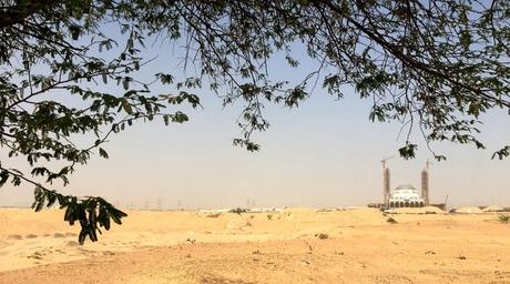 Grimshaw to design new botanical garden in Sharjah