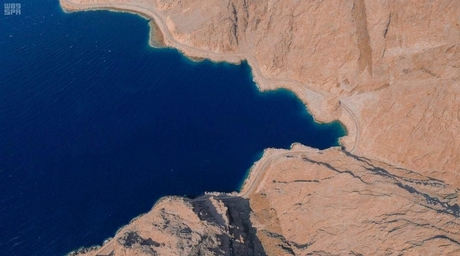 Submerged  tunnel bridge planned for Saudi's Neom gigaproject